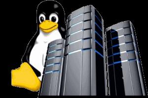 Linux Services St. Louis